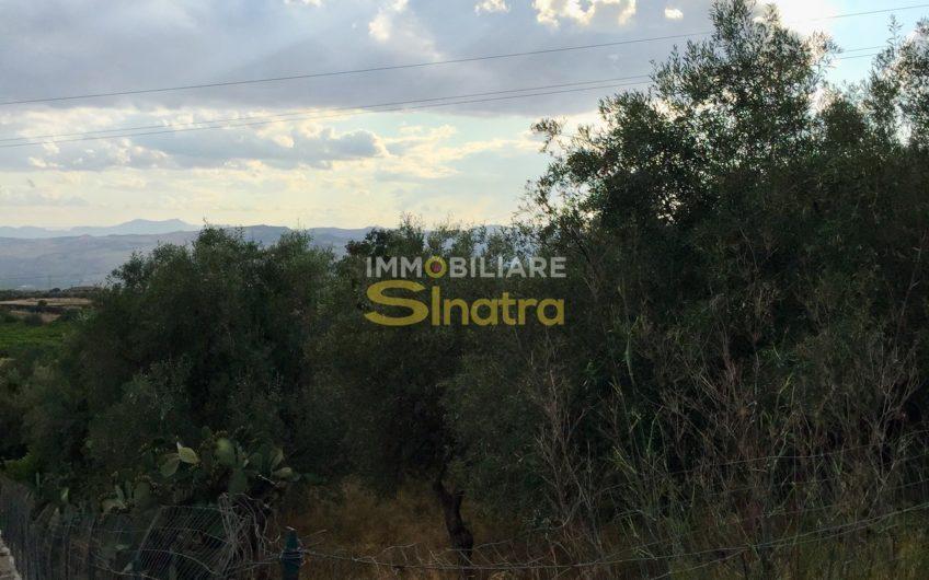 I-216 PATERNO' – C.DA ROMITI – ZONA SCALILLI