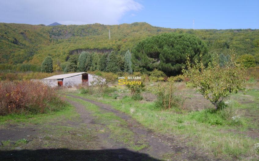 I-041 PEDARA – CONTRADA TARDERIA