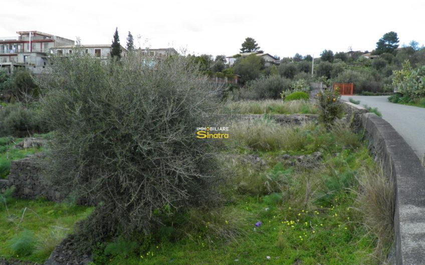 I-139 PATERNO' – SCALILLI